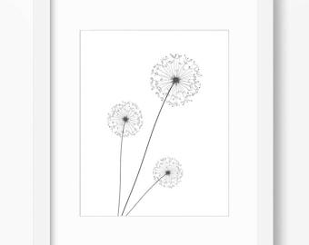 Dandelion Print, Dandelion Art, Flower Print, Dandelion, Plant Print, Graphic Dandelion, Minimalist Dandelion, Modern Dandelion Art