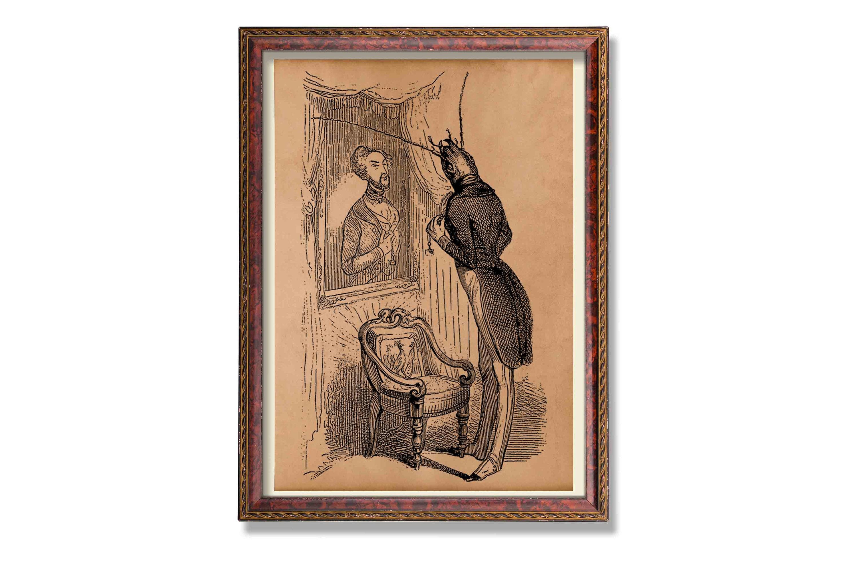 Herr Bug Insekten Poster Tier Dekoration Antik Steampunk Abbildung Drucken