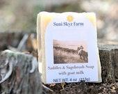 Saddles and Sagebrush Soa...