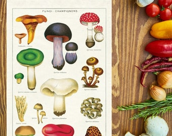 Mushroom Kitchen Towel   Mushroom Towel   Mushroom Tea Towel   Mushroom Flour Sack Towel   Mushroom Print   Fungi Towel   Gift for Cook