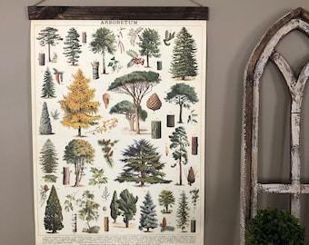 Tree Print   Tree Species Wall Art   Trees Print Vintage   Trees Poster   Botanical Art   Botanical Print   Trees Print Art   Tree Chart