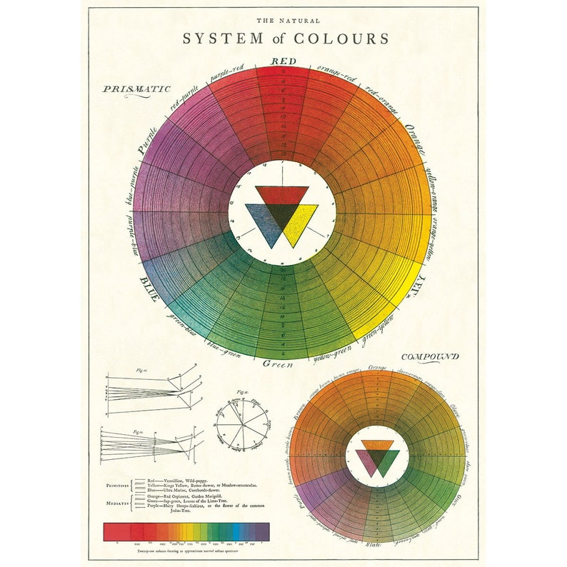 Color Wheel Art Color Wheel Wall Art Color Wheel Print Etsy