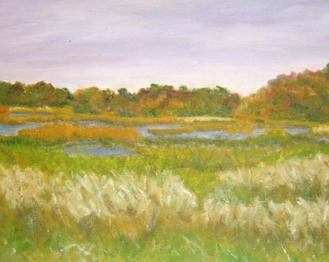 "Free Ship: ""Wetland Marsh & Hunting Scene"", Bombay Hook NWR, Smyrna DE - Plein Air Oil"