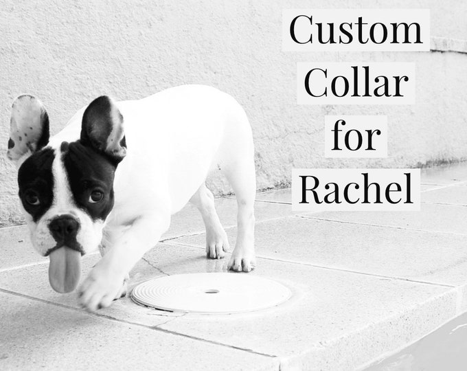 Custom Collar for Rachel