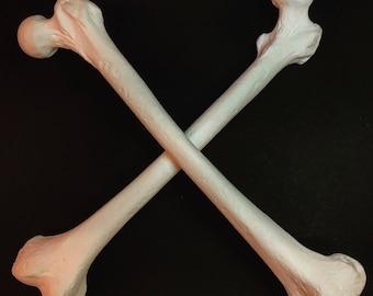 Human femur replica