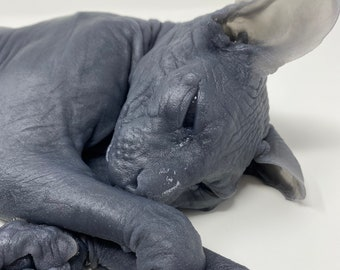 "Sphynx Cat ""Halloween Brock"" silicone deathcast"