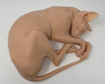 "Sphynx Cat ""Brock"" silicone deathcast"