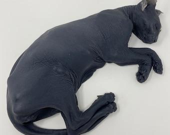 "Sphynx Cat ""Halloween Malibu"" silicone deathcast"