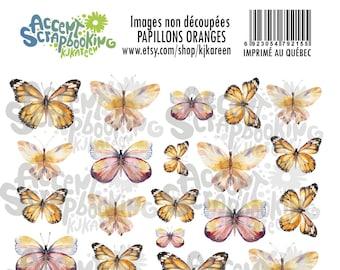 Papillons oranges à découper