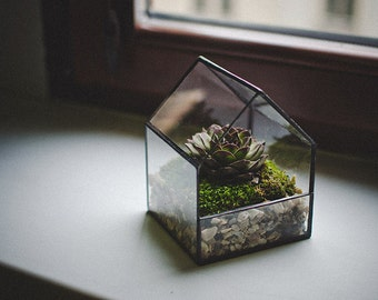 Glass Terrarium Small House Stained glass decoration Home decor Planter for indoor gardening Succulent Moss Fairy garden