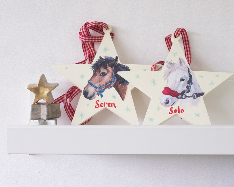 Personalised Pet Portrait Gift Stars ideal presents for horse image 0