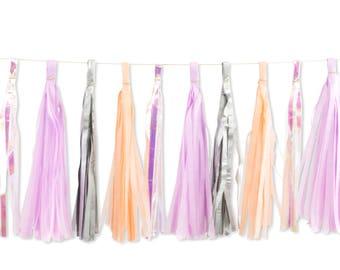 Sugar Plum Fairy Tassels, Tissue Tassels, Tassel Banner, Birthday Party Decor, DIY Tassel, Girl Birthday Party Wedding Decor Baby Shower