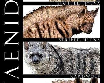 Hyenas of Africa