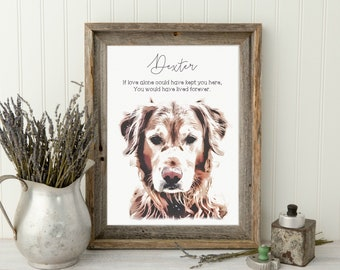 Personalized Pet Memorial Frame | Pet Loss Gifts | Cat Loss Gift | dog dad gift | Pet Bereavement Gift | Pet Sympathy Gift | Pet Loss Frame