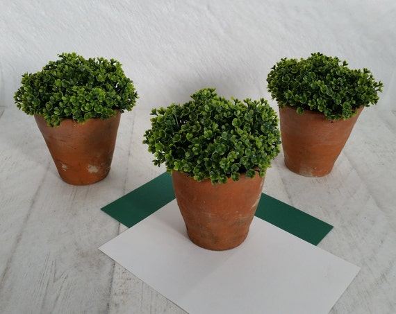 Artificial green box plants in vintage terracotta pots Realistic faux houseplant Small green indoor planter Pot plant Clay pot Gifts for her