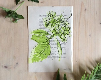 Hydrangea Screen Print  - Original Print on Vintage Book Page