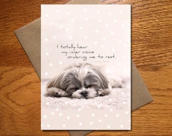 Every Day Spirit Cute Dog Card Get Well Friend Encouragement Funny Yoga Animal 5x7