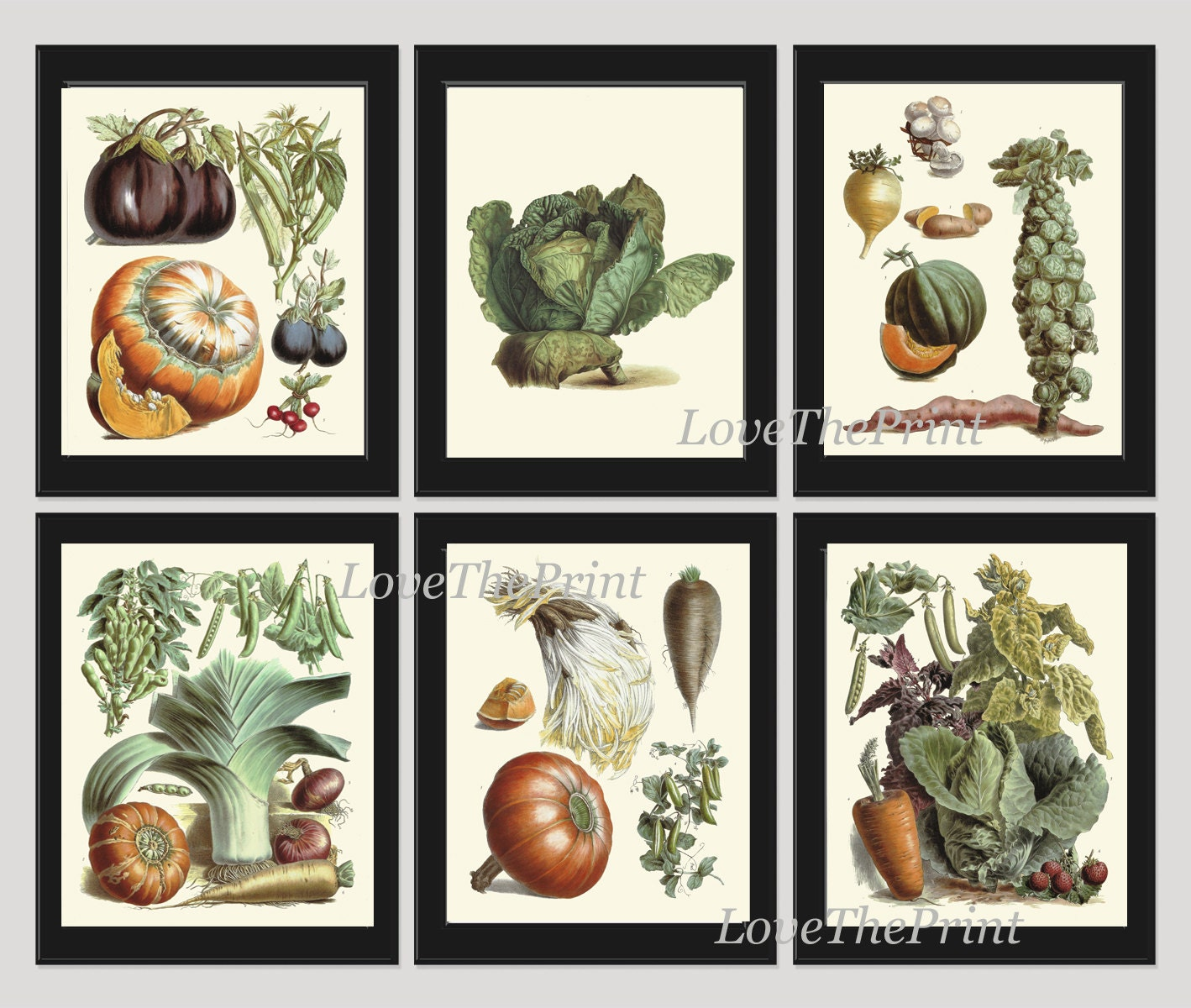 Purple Vegetable Wall Art: Vegetable Print Set Of 6 Wall Art Beautiful Antique French