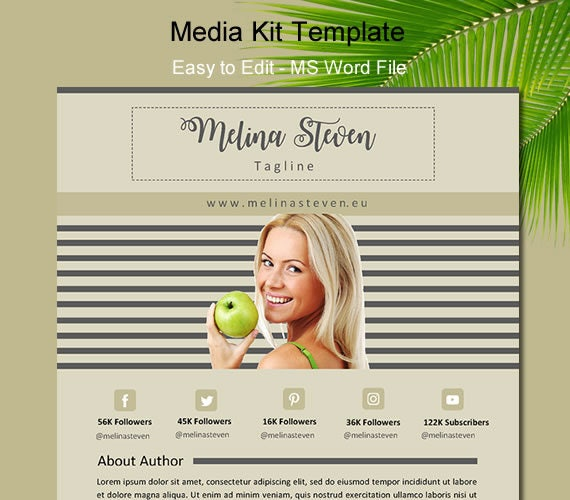 Media kit Blogger media kit media kit blogger One page