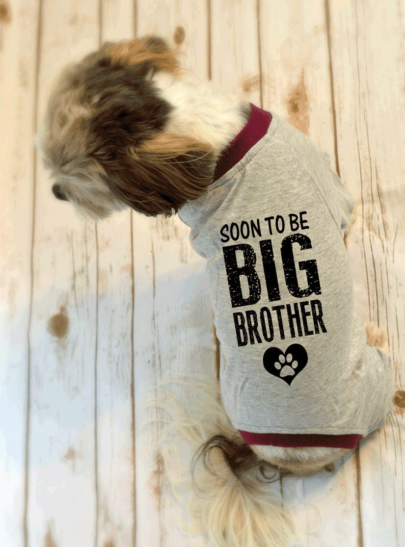 Soon to be Big Brother Small Dog Pajamas Pregnancy Reveal ...
