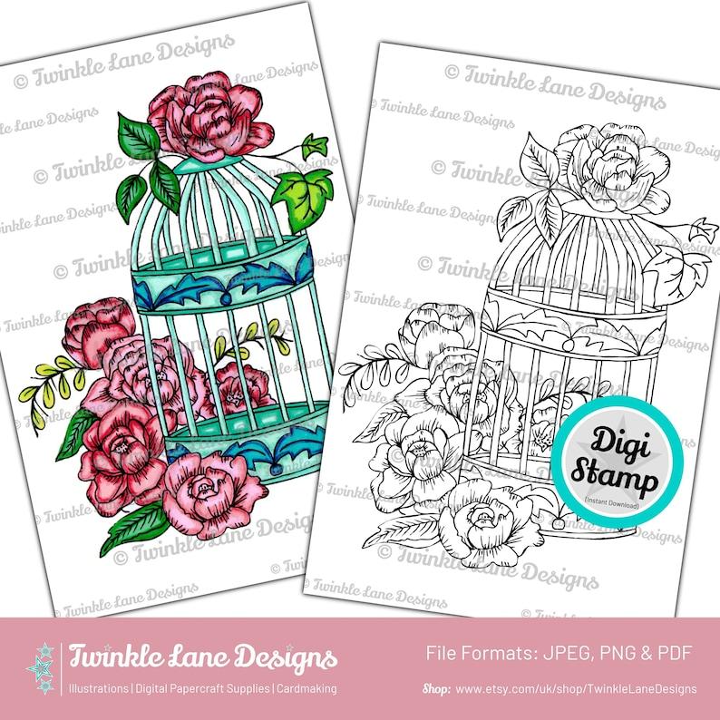 Floral Birdcage Digi Stamp  Instant Download image 0