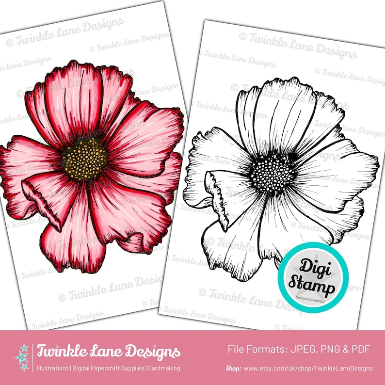 Cosmos Flower Head Digi Stamp  Instant Download image 0