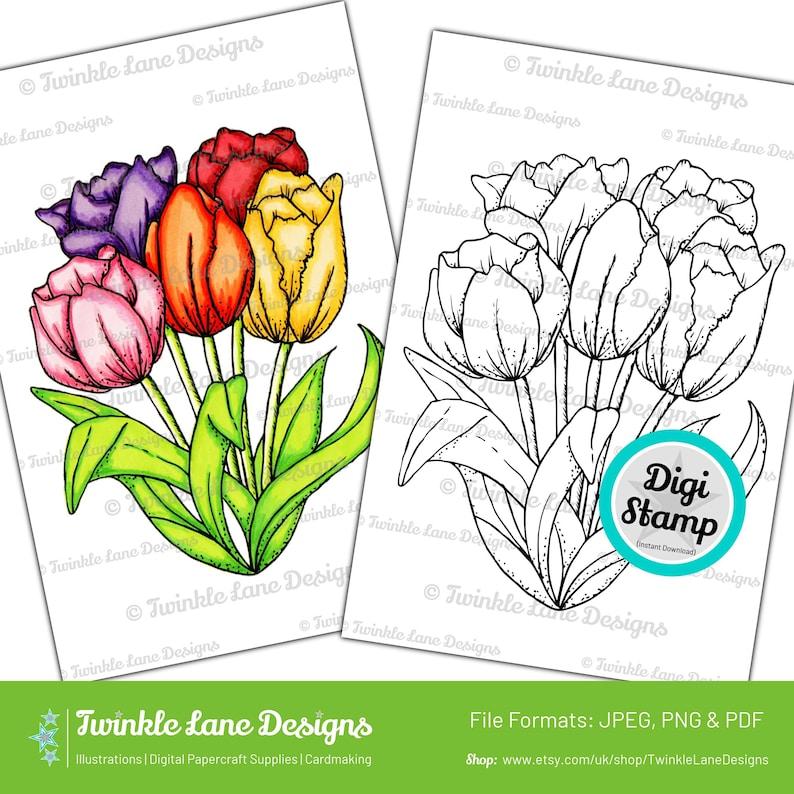 Tulip Flowers Digi Stamp  Instant Download image 0
