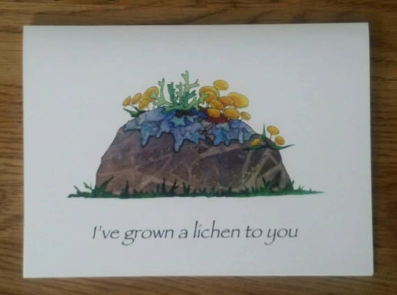 I've Grown a Lichen to You 5X7 Greeting Card, Pun Gift Card, Lichen Greeting Card, Valentine Card, FREE SHIPPING