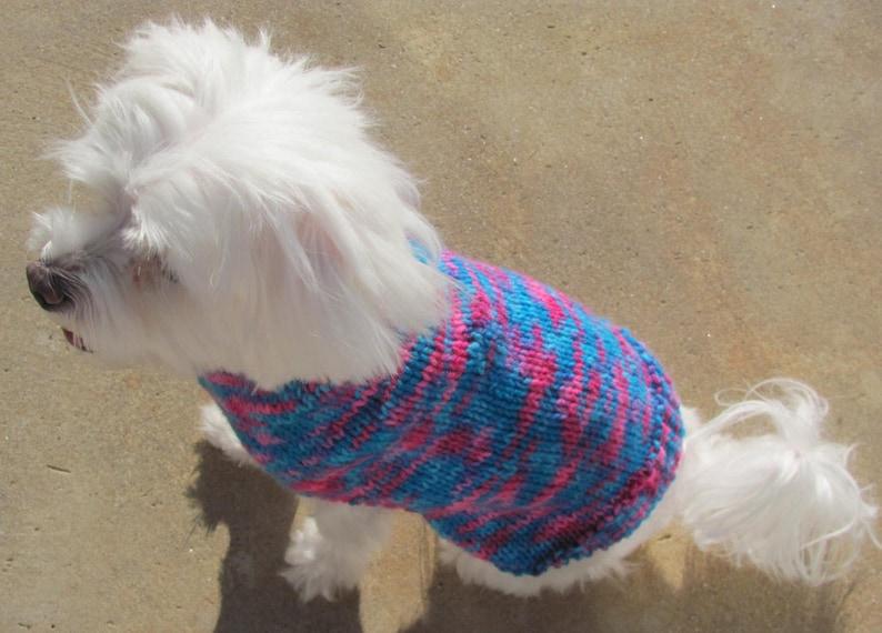 Handmade Bright Colored Dog Sweater Small Dog Multi-Color BluePink Sweater Multicolor Dog Sweater Small Dog Apparel