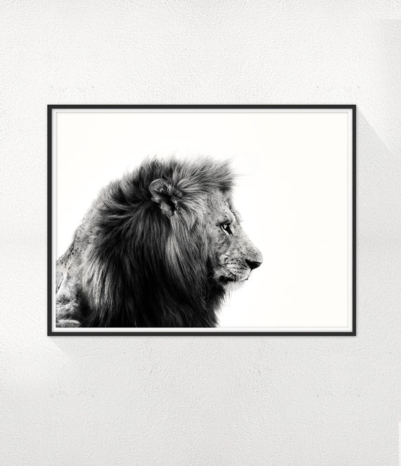 Lion Print, Lion Photography, Minimal photo, Black and White Wall Art, Animal Minimalist Print, Scandinavian Dinning room Wall Decor