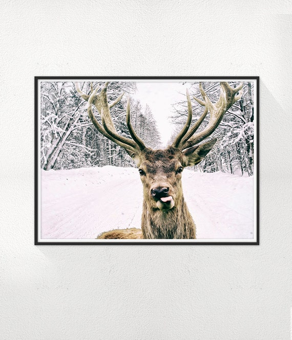 Deer Print, Winter Photography, Minimal photo, Deer Wall Art, Animal Photo, Minimalist Print, Scandinavian Printable Art, Modern Print