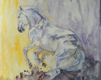 Lusitano dream- original watercolor painting