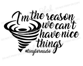 tiny tornado toddler SVG, DXF, EPS, hurrican toddler clipart, reason we can't have nice things cuttables, clip art, Cricut, Silhouette