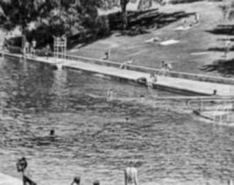 D0260 Barton Springs Pool June 24 1972