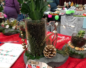 Christmas Cactus Etsy