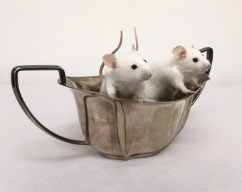 Taxidermy mice in an antique pot