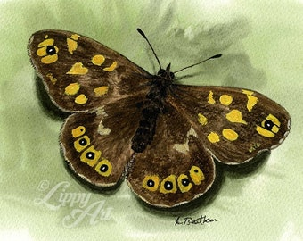 Woodland Project Series: Speckled Wood Butterfly (Watercolour by Mouth) - Original, Mounted