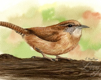 Woodland Project Series: Wren (Watercolour by Mouth) - Original, Mounted