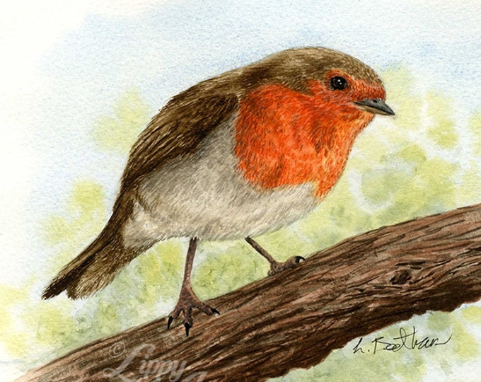 Woodland Project Series: European Robin (Watercolour by Mouth) - Original, Mounted