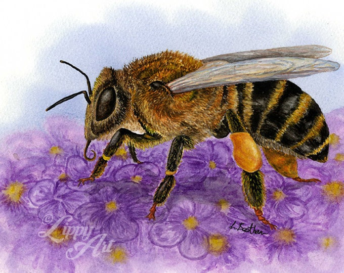 Woodland Project Series: Honey Bee (Watercolour by Mouth) - Original, Mounted