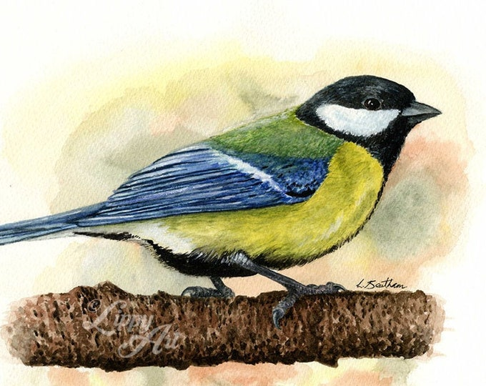Woodland Project Series: Great Tit (Watercolour by Mouth) - Original, Mounted