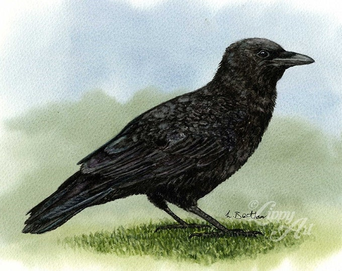 Woodland Project Series: Carrion Crow (Watercolour by Mouth) - Original, Mounted