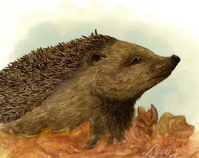 Woodland Project Series: European Hedgehog (Watercolour by Mouth) - Original, Mounted