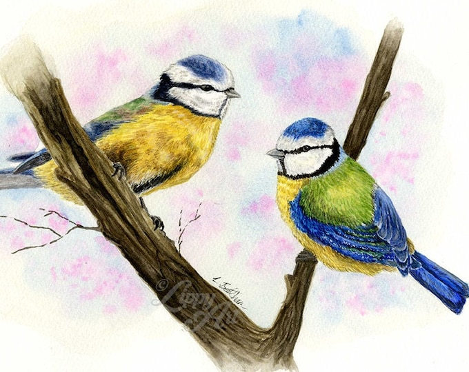 Woodland Project Series: Blue Tit (Watercolour by Mouth) - Original, Mounted
