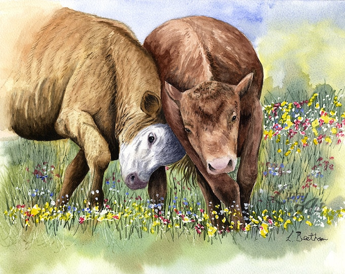 Mock-Fighting Bullocks (Watercolour by Mouth) - Original, Framed & Mounted