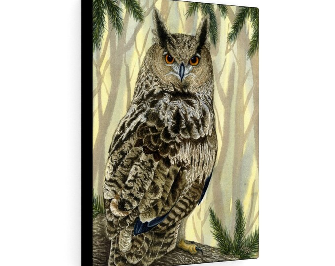 Eagle Owl (Watercolour By Mouth) - Print On Stretched Canvas, 12x16 inches