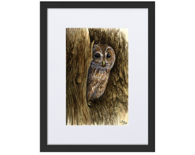 Tawny Owl (Watercolour By Mouth) - Print, Matte, Framed & Mounted (30x40cm)