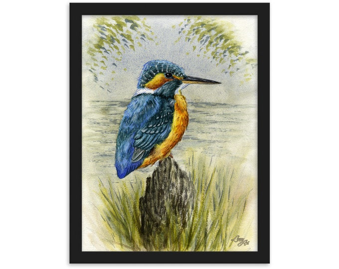 Kingfisher (Watercolour By Mouth) - Print, Matte, Framed (30x40cm)