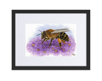 Honey Bee (Watercolour By Mouth) - Print, Matte, Framed & Mounted (30x40cm)