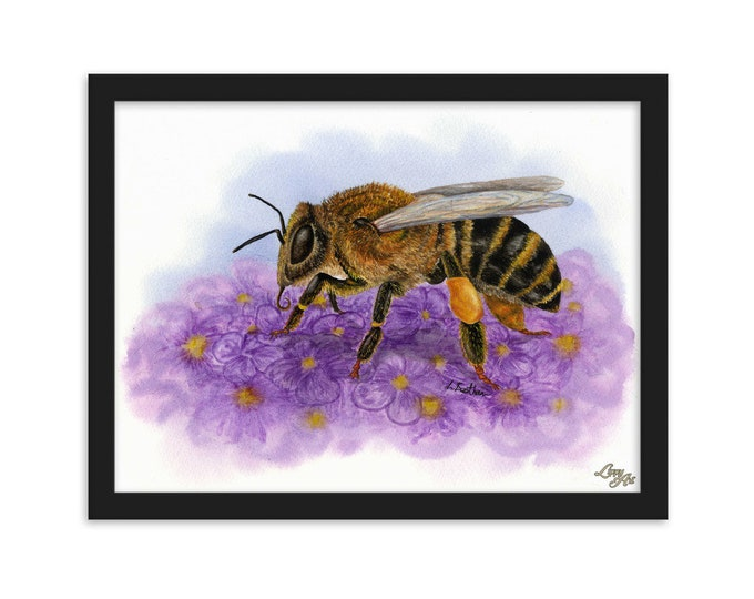 Honey Bee (Watercolour By Mouth) - Print, Matte, Framed (30x40cm)